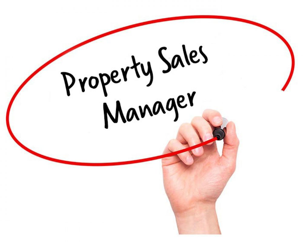 Image result for Property Sales Manager