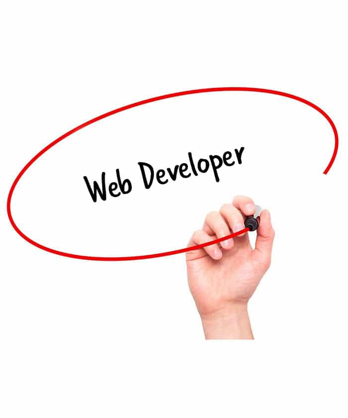 Web Developer Job Description  Hr Services Online